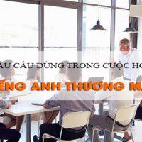 Mau-cau-dung-trong-cuoc-hop-tieng-anh-thuong-mai-p5